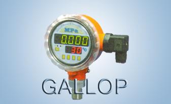 压力温度控制仪
